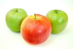 Poradnia zdrowego żywienia